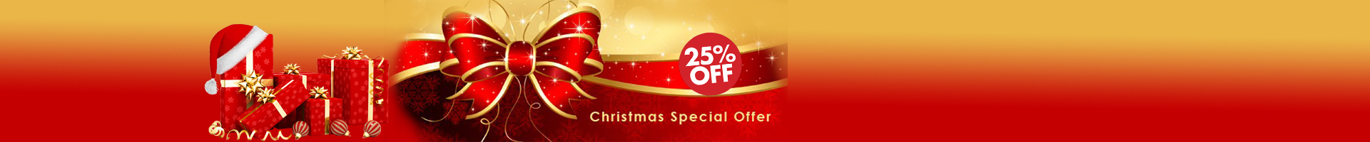 Christmas Special Offers 25% OFF